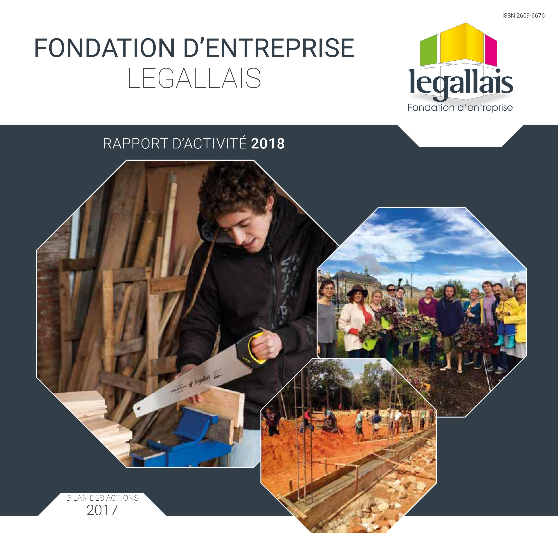 rapport fondation 2018-1